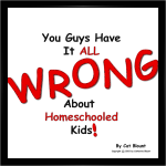You Guys Have It All Wrong About Homeschooled Kids Cover 3